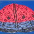 2008 - bonnet rouge et bleu