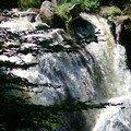 - Schwarzwald Aout 2007 Triberg Wasserfall