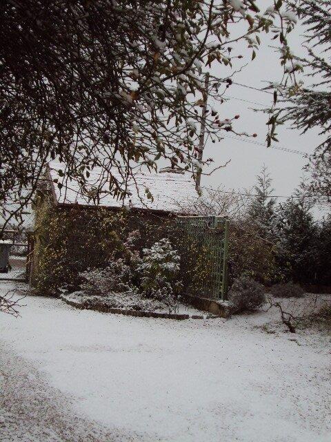 neige le 16 decembre 2009