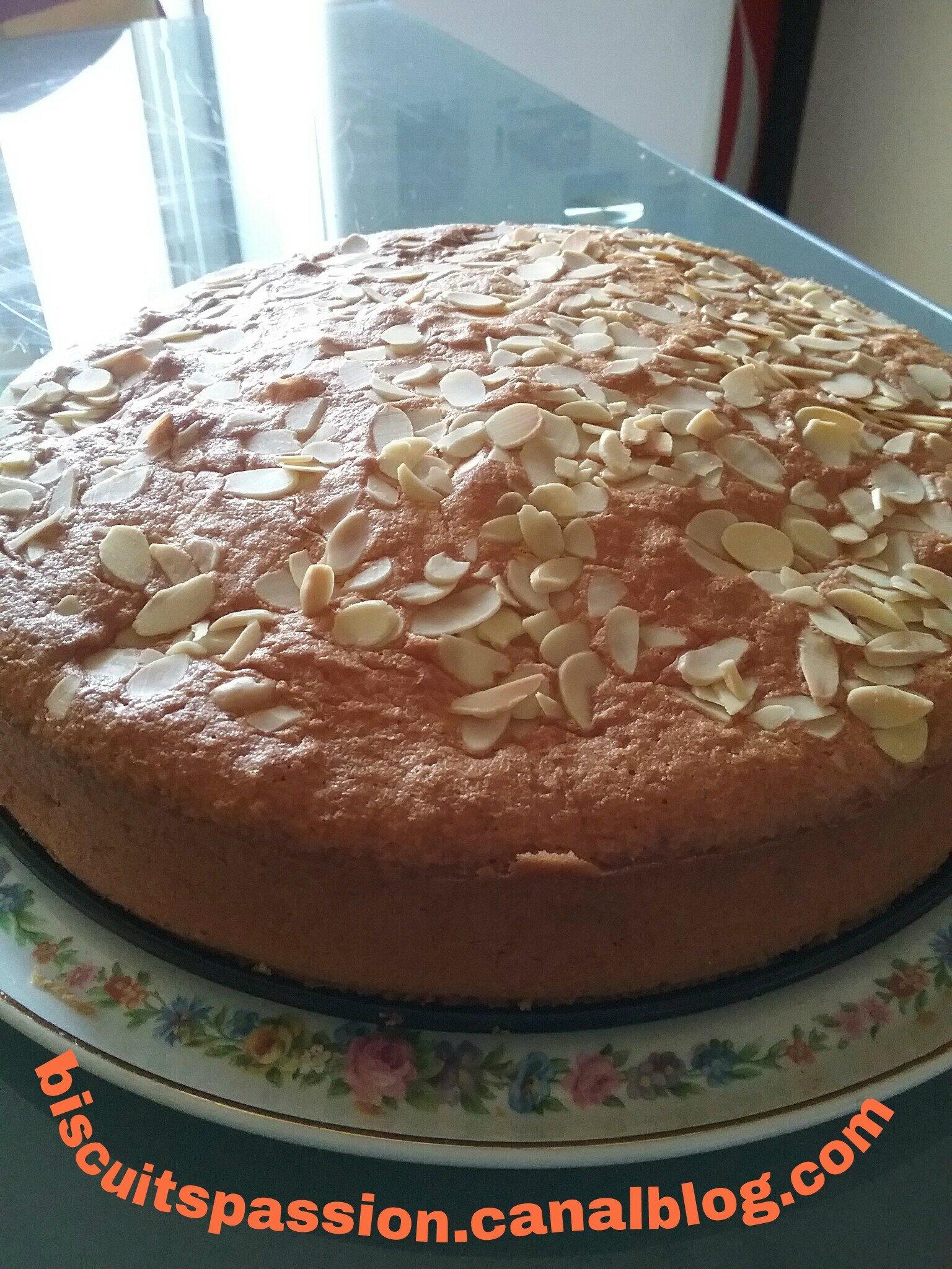 Gâteau abricots 043