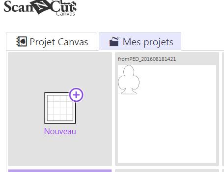 projet enregistré