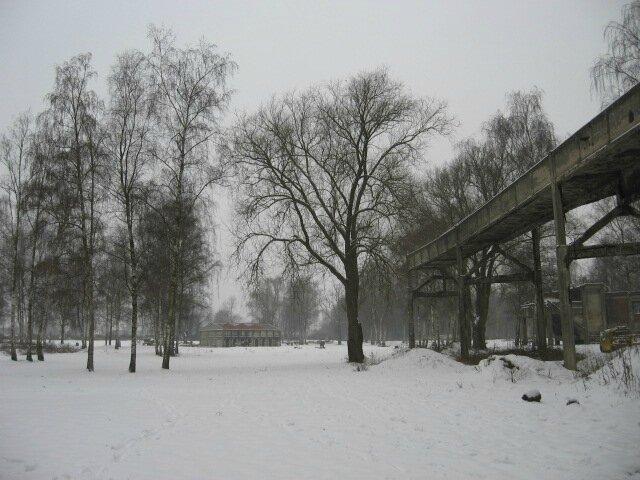 Marcasse in the snow - photo Nadine Gravis - IMG_2124
