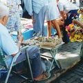 Mercado Yucatan