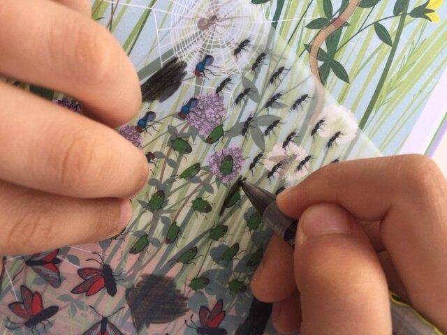 papillons et autres petites bêtes décalcomanies 8