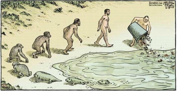 evolution-of-stupidity