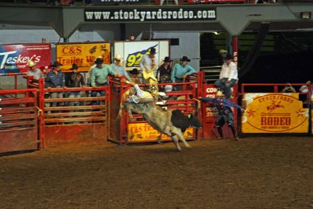 Rodeo_25