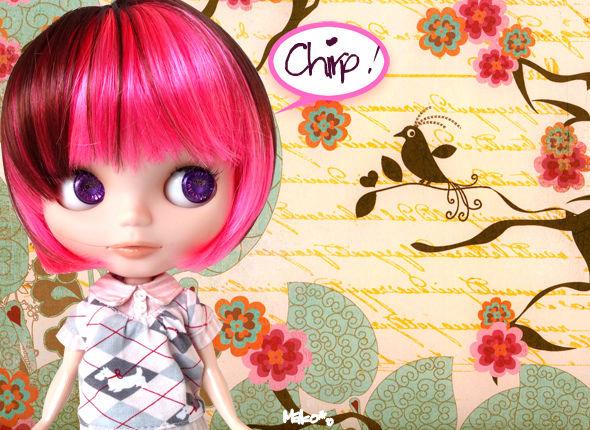 Chirp_Gossip