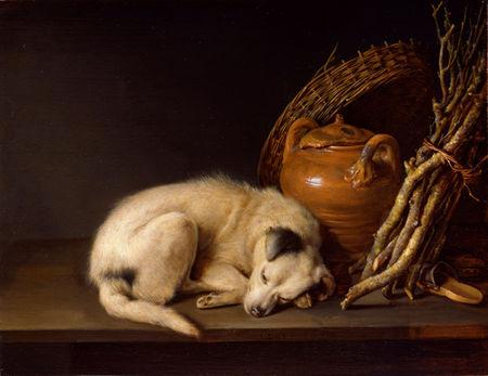 06_sleeping_dog