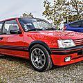 Peugeot 205 gti 2 litres tct