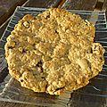 Maxi cookie avoine-rhum-raisins
