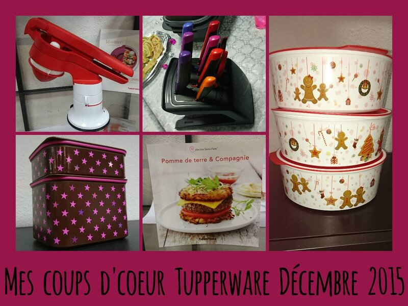 mamanprout_tupperwaregrandtoulouse (13)