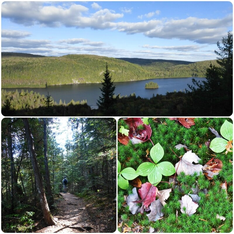 parcmauricie4