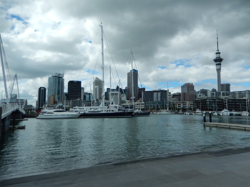 Auckland from the Pier