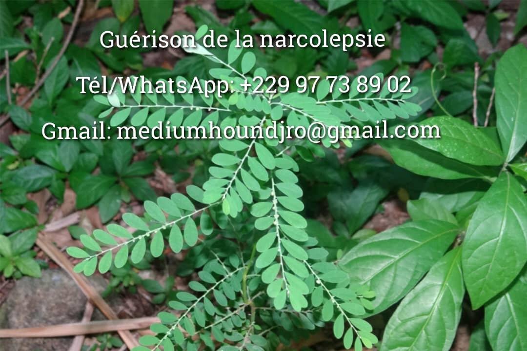 Guérisson de la narcolepsie avec le poudre noire du maître marabout HOUNDJRO