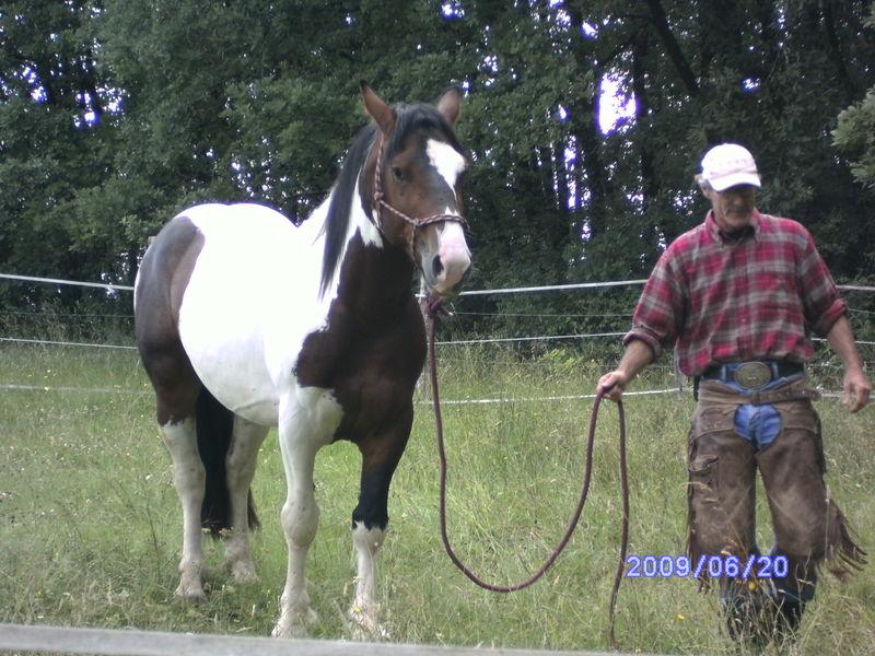 CAZOR 2009 20