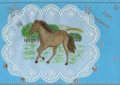 cheval en PCE ( février 2012 )