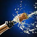 Wall-street boit le champagne en regardant les manifestants avec amusement...