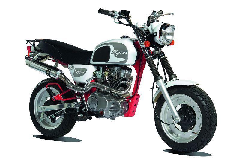 moto 125cc skyteam cobra norauto. Black Bedroom Furniture Sets. Home Design Ideas