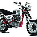 Moto 125cc skyteam cobra
