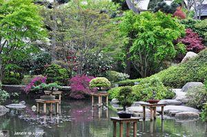 Jardin-Albert-Kahn-106