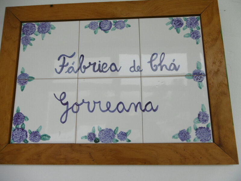 fabrique de thé Gorreana (1)