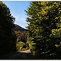 IMG_6895-1