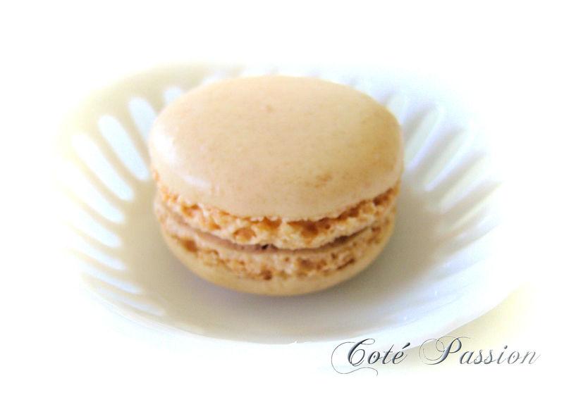 Macaron5