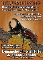 Affiche Bourse-Expo Reptiles, insectes, Mygales Flers en Escrebieux