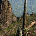 Les montagnes du Simien : Vue d'Imet Gogo