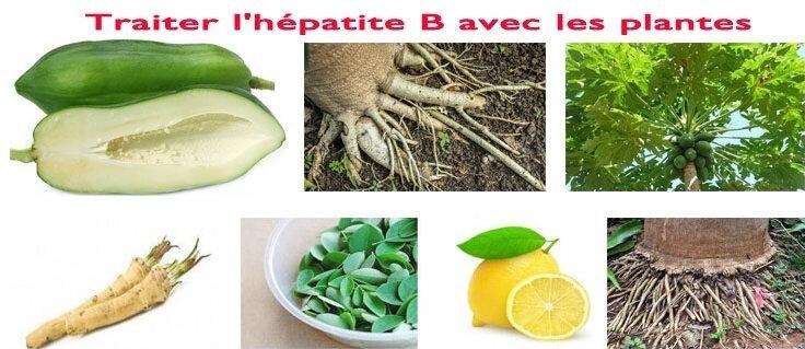 COMMENT TRAITER L'HÉPATITE B AVEC LES PLANTES?