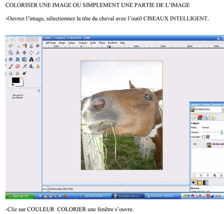 coloriser_une_image_1