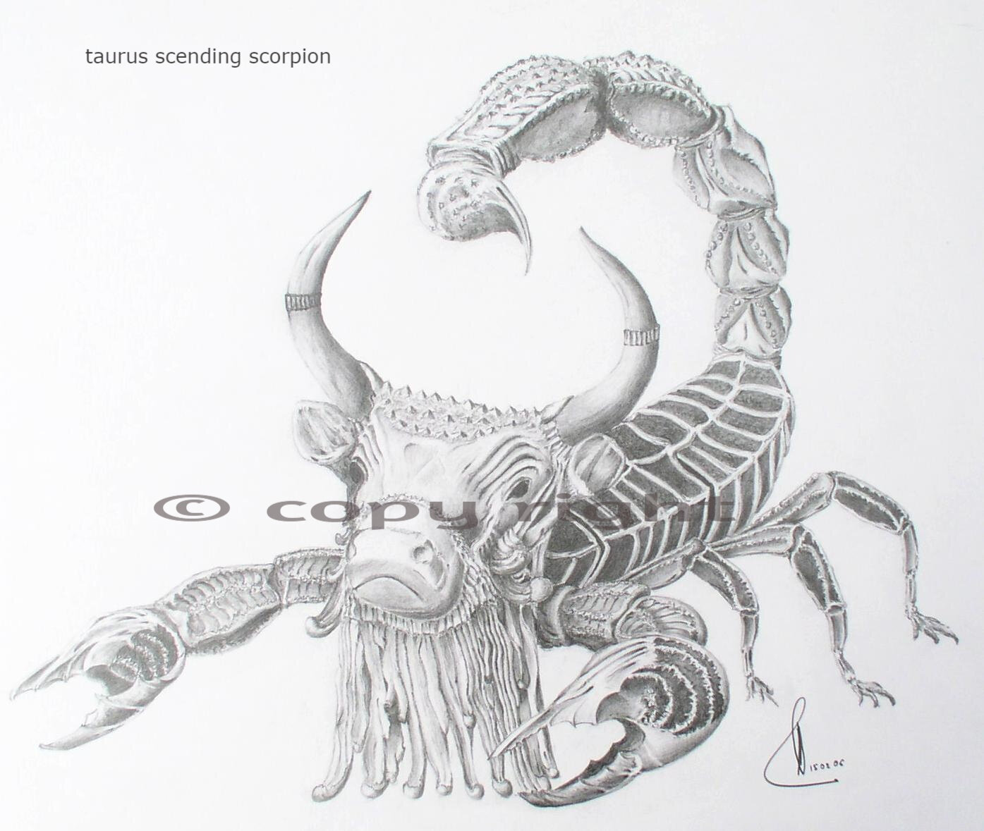 Taurus ascending scorpion