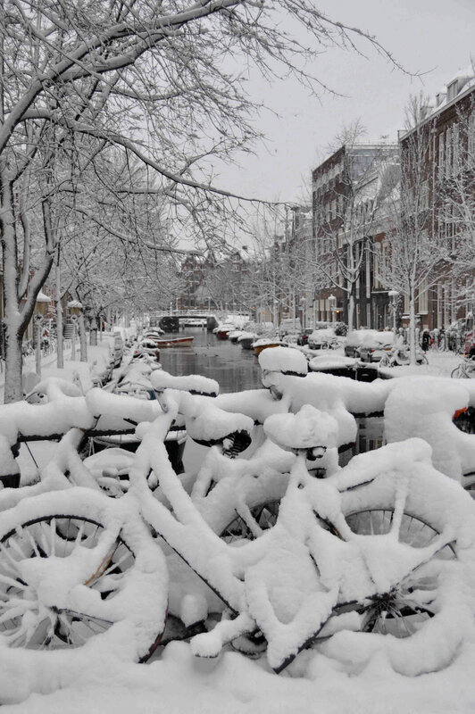 SnowedInBicycles