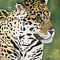 Léopard - pastelcard 50 x 70 cm