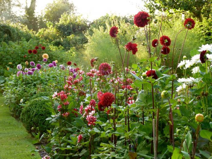 700_remodelista-ben-pentreath-fall-garden-08