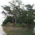 Origine du fleuve Senegal