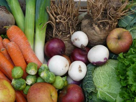 legumes janvier