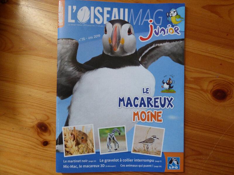 Oiseau Mag Eté 2019 (1)