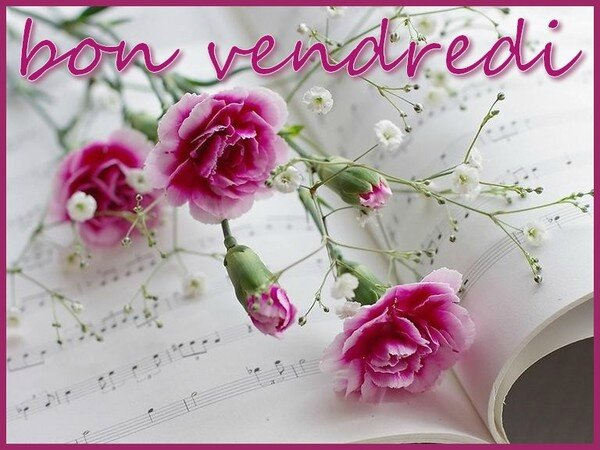 vendredirose