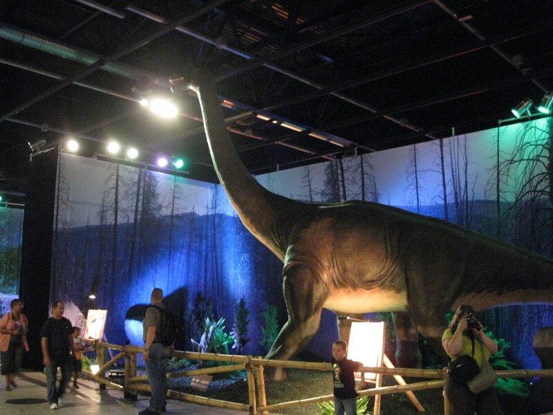 les dinosaures 072