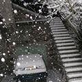 2008 12 10 La neige qui tombe