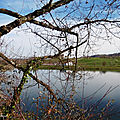 Lac de Guiche et Bardos 080219