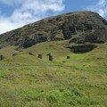 Ile de Pâques, carriere de Moai de Rano Raraku