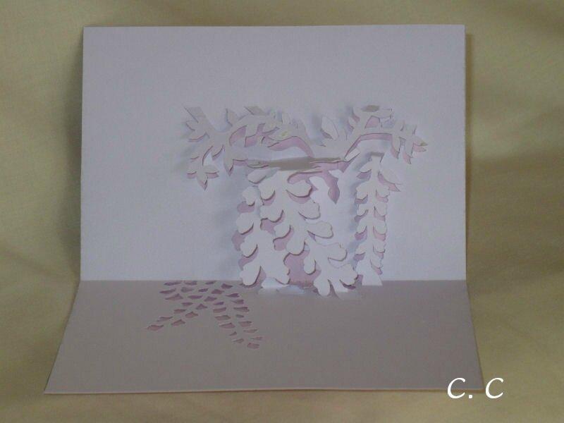 Glycine (800x600)