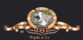 Wipiki_and_co