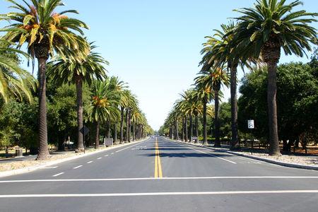 Palo_Alto_6