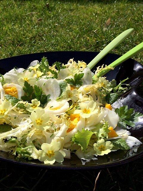 salade_primev_res