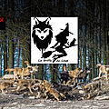 La griffe du loup
