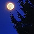 lune&&&