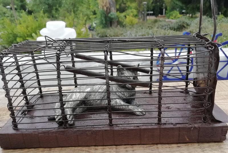 antonio antonis cage chat